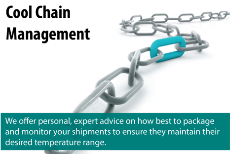 Cold Chain Management Solutions